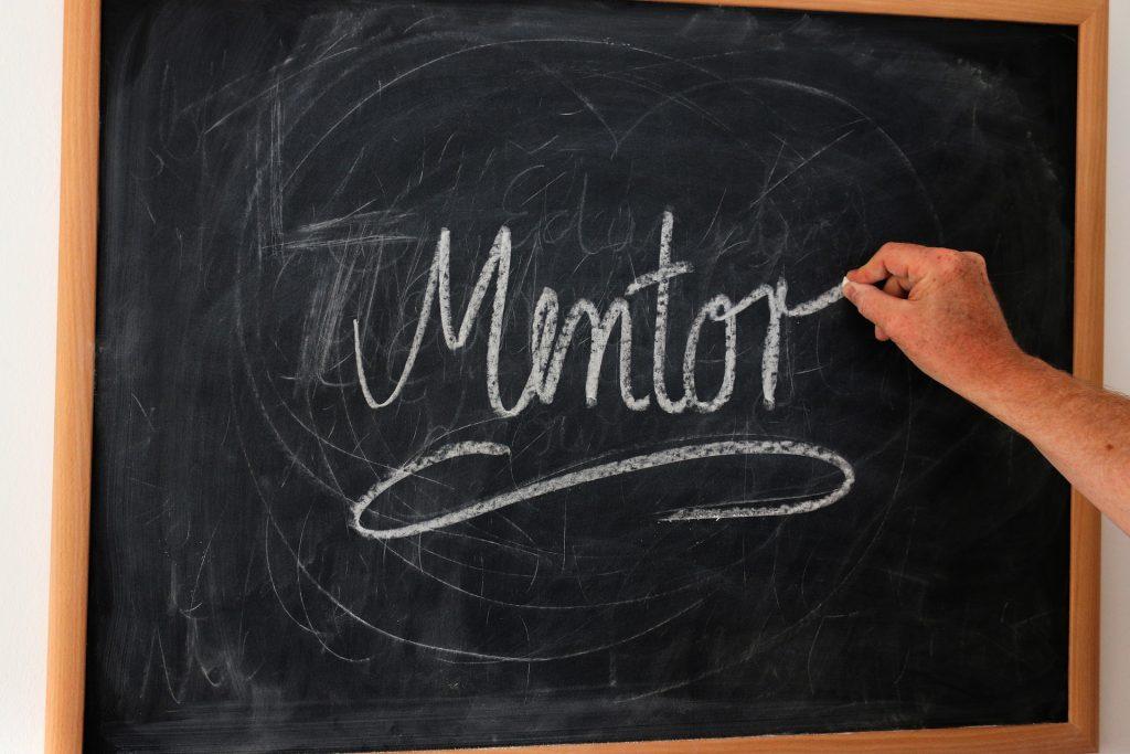 Mentor,Führung,Führungskultur,Kulturwandel,werte+mehr,integrierter Kulturwandel,Coaching